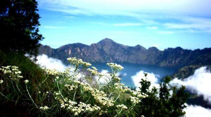Plawangan Sembalun. | via: isigood.com