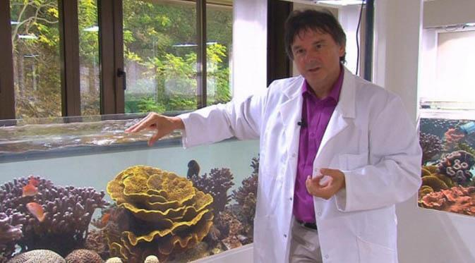 Unik, seekor udang raksasa dengan berat 145 kilogram dan panjang nayris 3 meter tertangkap pemancing di sebuah muara sungai.