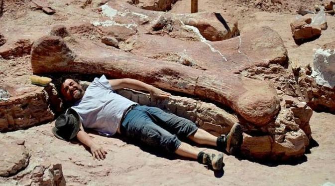 Salah seorang ahli paleontologi berbaring di sebelah femur sauropoda yang ditemukan di Argentina pada 2014 (MEF)