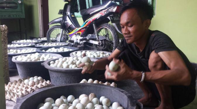 Setelah dibersihkan, telur asin disortir untuk menjaga kualitas telur yang dijual. (Liputan6.com/Fajar Eko Nugroho)